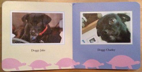 Two pictures of dogs on a multicolored page with cute turtles in a baby's board book